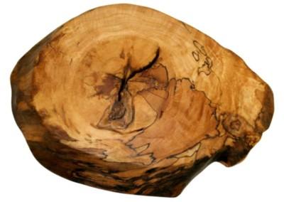 Maple Root Stump